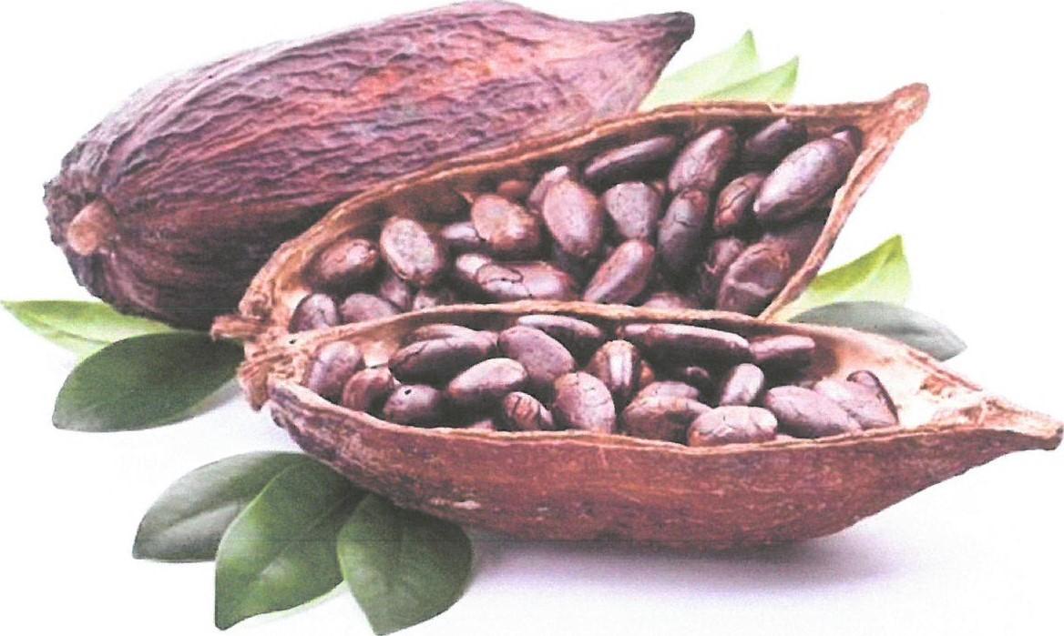 chocolate 2 - CAFES LUTHEIR
