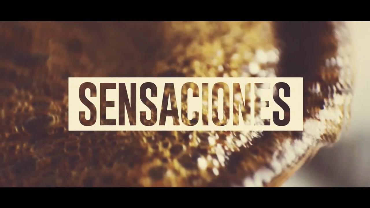 SESANCIONES - CAFES LUTHIER