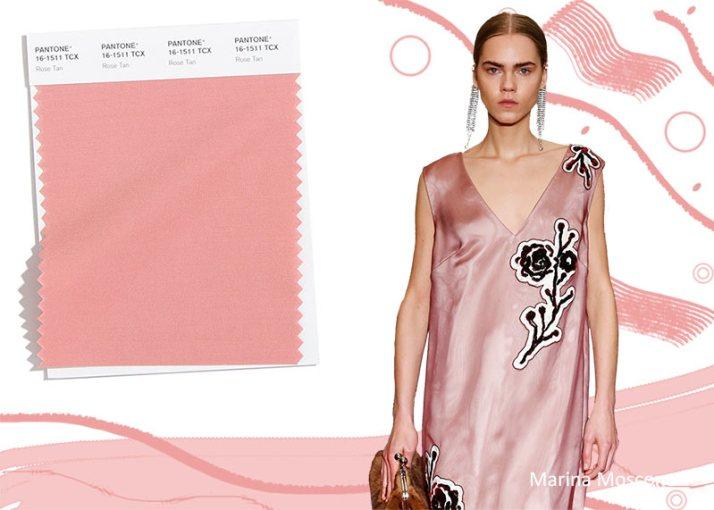 Colores de moda otoño invierno 2020 2021 | Café Versátil