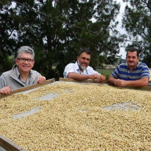 P&S_哥斯達黎加_咖啡莊園創辦人