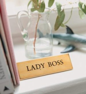 "A photograph of a surface, with books leaning on the left, a glass jar with a plant, a shark decor and a label with the words ""Lady Boss"" on it."