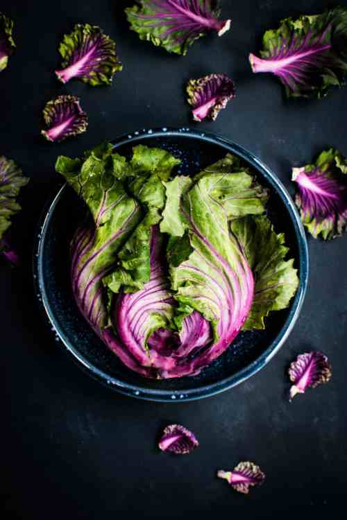 A flatlay photograph of a blue bowl with vibrant green and purple swiss chard leaves.