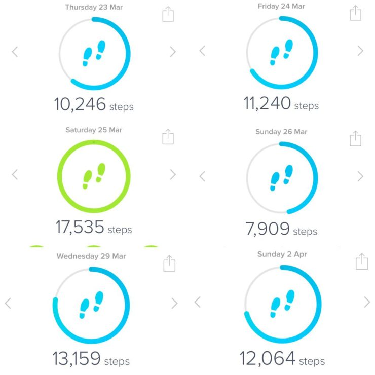 fitbit steps - caffeineberry