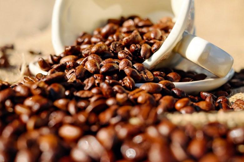 caffeine brothers