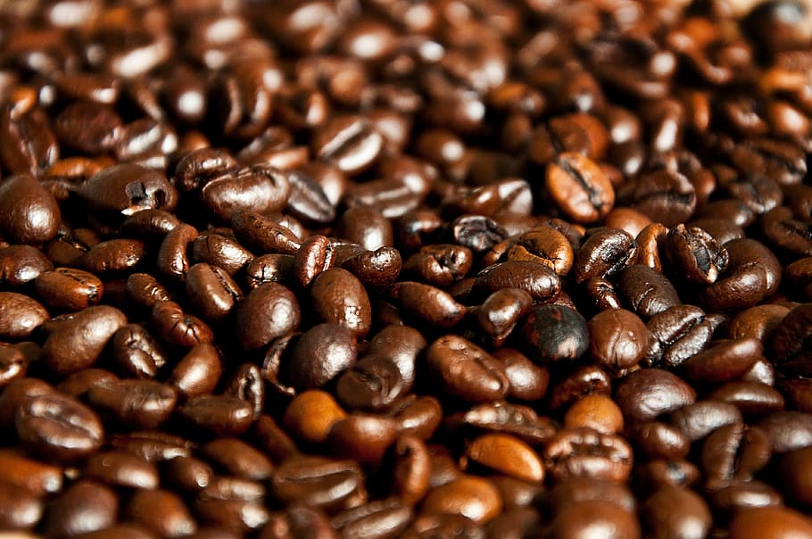 The Philippines and Indonesia agree to train coffee farmers