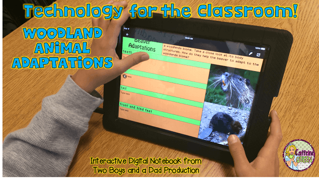 """""""When Grandma Gatewood Took a Hike"""" complete teaching unit with reading, writing, technology, and science"""