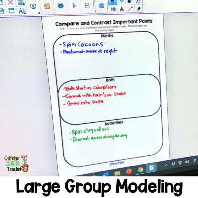large group modeling of how to write a compare and contrast essay