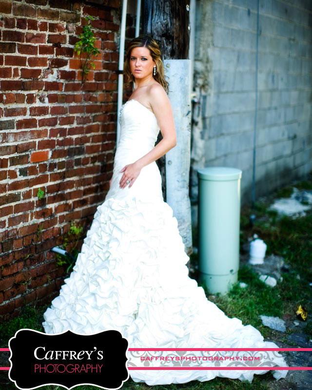 Cheap Wedding Dresses In Houston Texas 6 Lovely Trash the dress photos