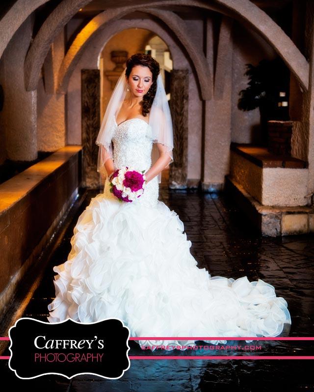 Cheap Wedding Dresses In Houston Texas 73 Nice Stunning Bride at Las