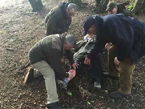 Forestry first aid EFAW +F