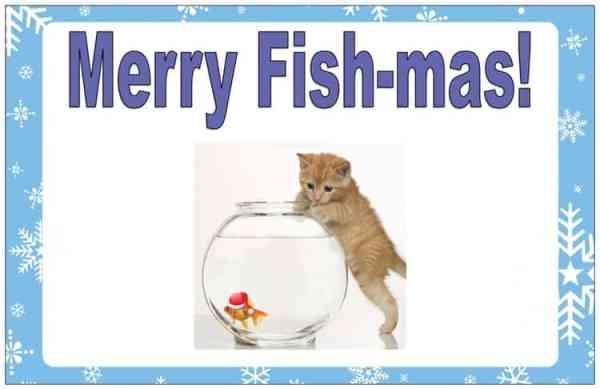 fish holiday card