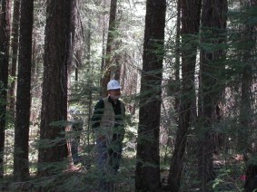 Joe teaches in the woods.