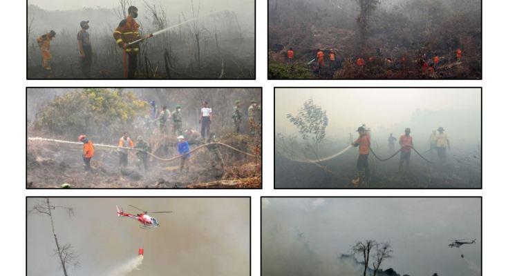 Pedaman Kebakaran Hutan