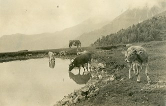 Grigna, 1935
