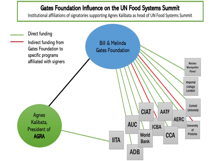 Figure from the AGRA WAtch report depicting institutional affiliations of signatories supporting Agnes Kalibata as head of US Food Systems Summit, who received direct and indirect funding from the Gates Foundation