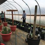 Report-back: Field Trip to Cooperativa Tierra y Libertad