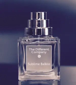 the-different-company-sublime-balkiss