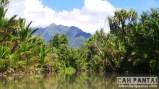 Sungai Salawai