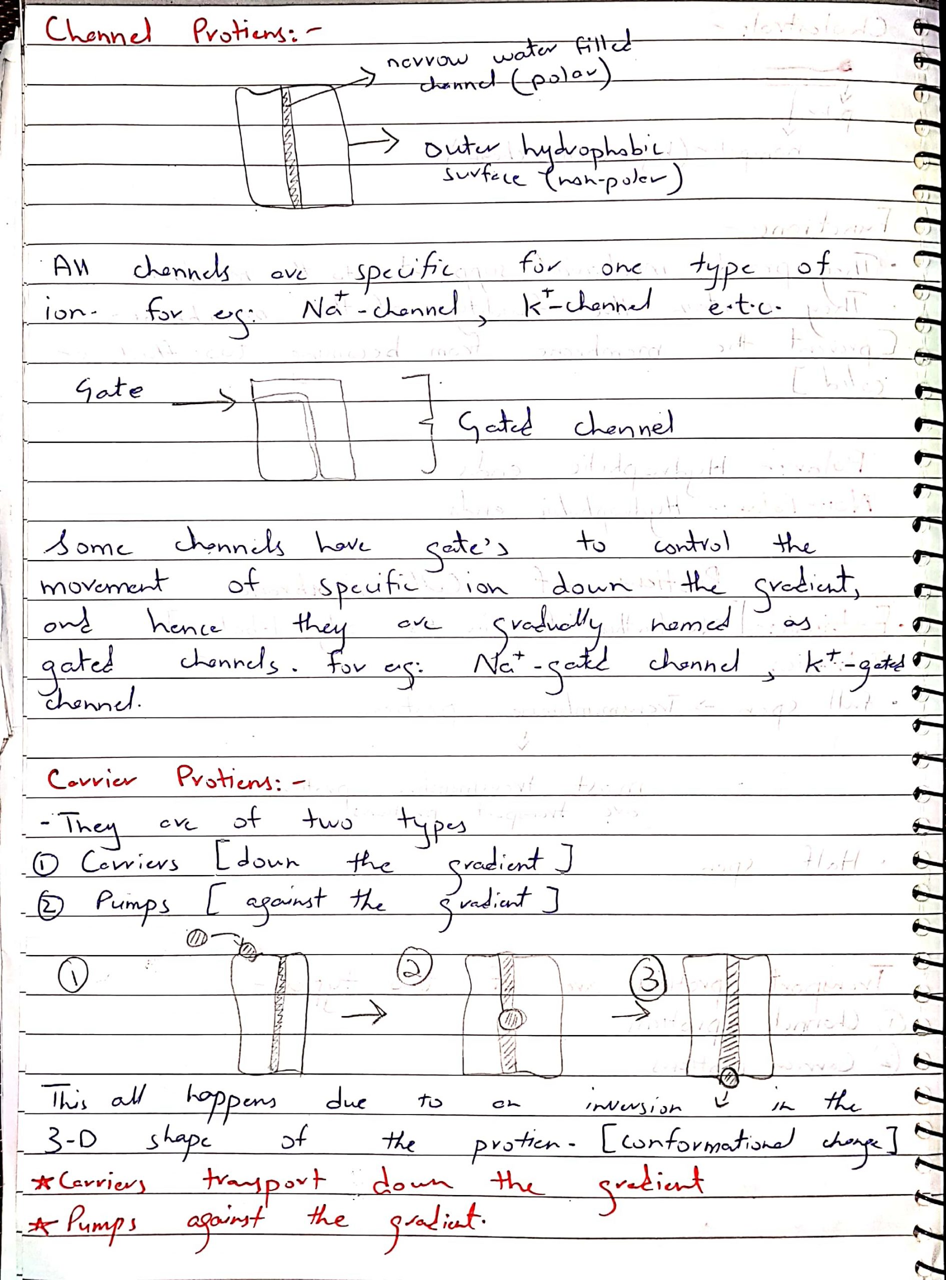 As biology notes by Dr Husnain chap Cell Membrane_6