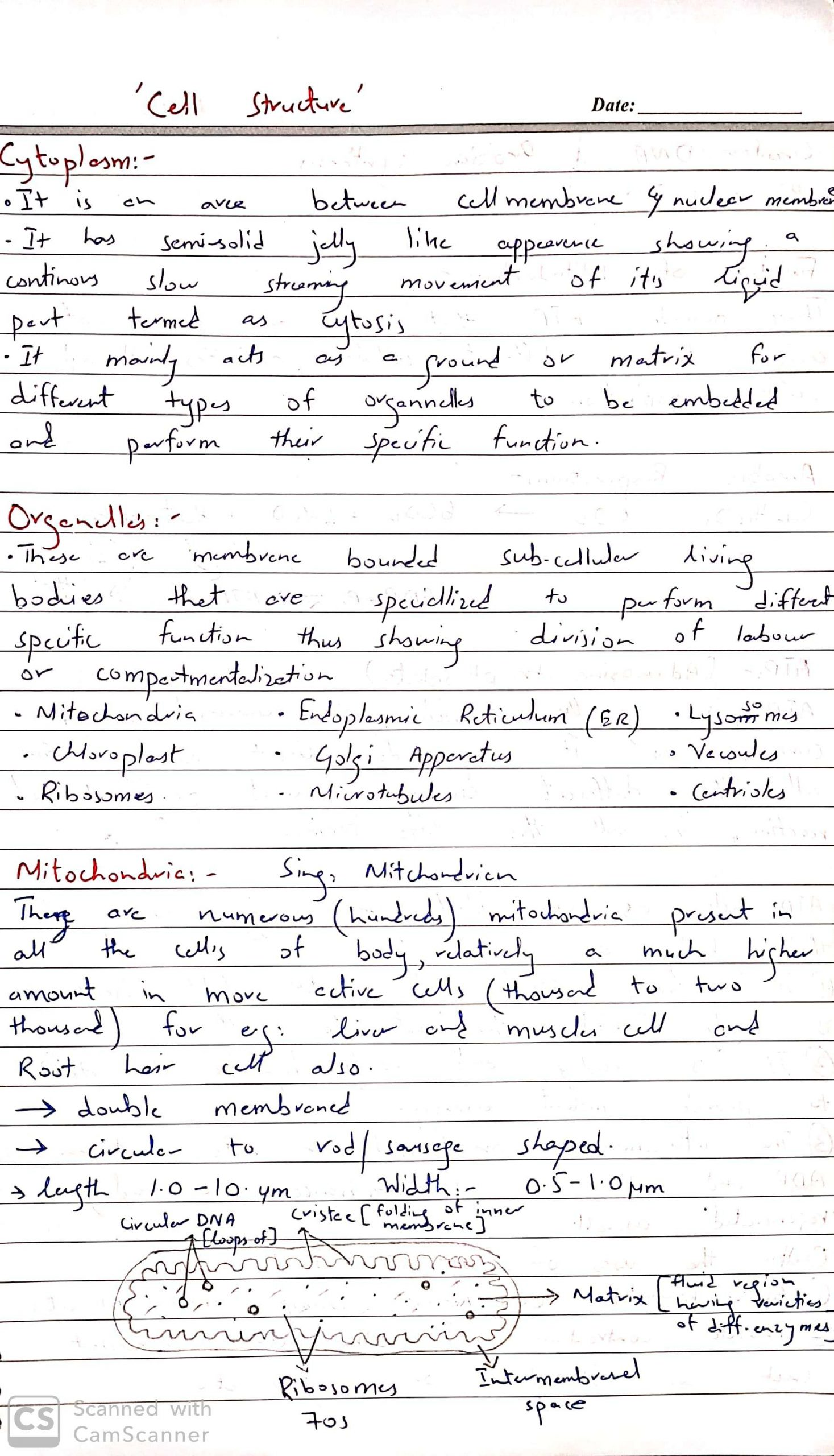 As bio by Dr Husnain CELL ORGANELLES 3_1