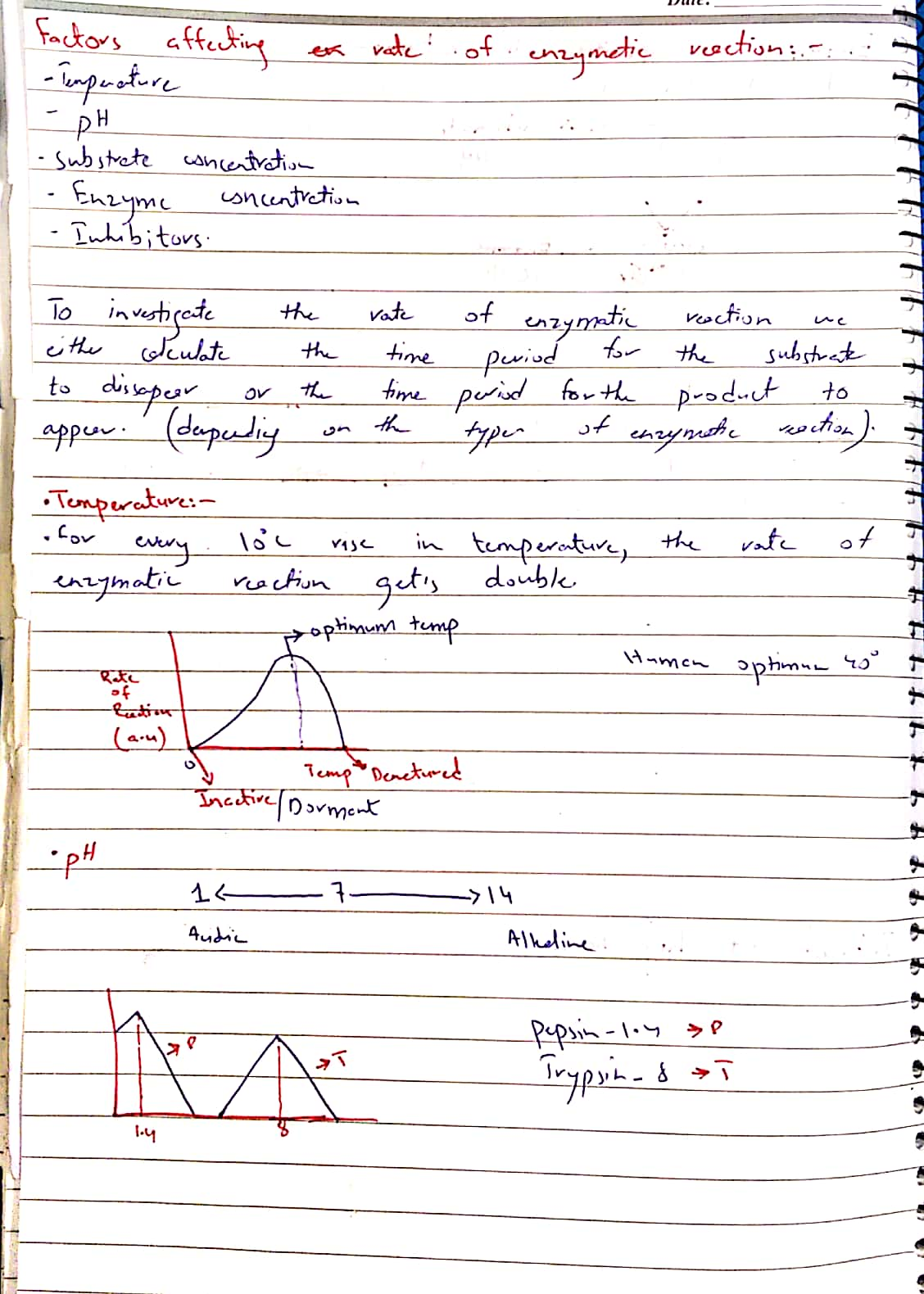 Enzymes._3