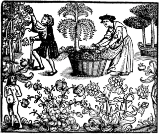 a plate picture showing people picking grapes in the form of a wood print.