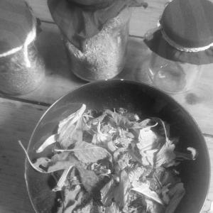 Some of the raw herbs for infusion for the herbal bone balm