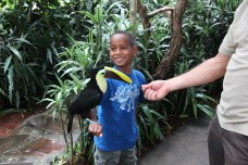 Seth with a Toucan