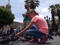 Feeding the pigeons in the plaza.
