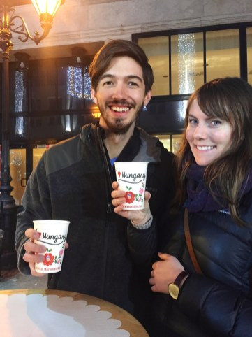 Sipping mulled wine at one of Budapest's Christmas markets is the perfect way to celebrate the holiday season. Click to read all about the best Christmas markets in Budapest.