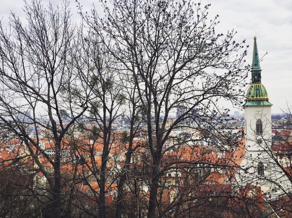 Did You Know: Slovakia's capital city, Bratislava, is full of hidden alleys, diverse architecture, delicious food, and amazing history? Click to discover more Secrets of Slovakia!