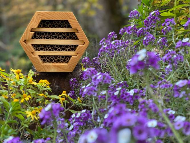 Native-Bee-House-Outdoor-Bee-Conservancy-7-scaled