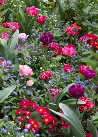 Tuileries Garden (2 of 4)