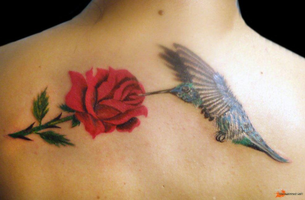 значение татуировки колибри фотографии тату