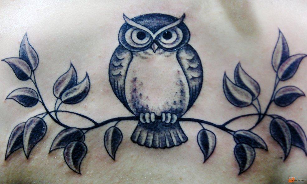 значение татуировки сова фотографии тату