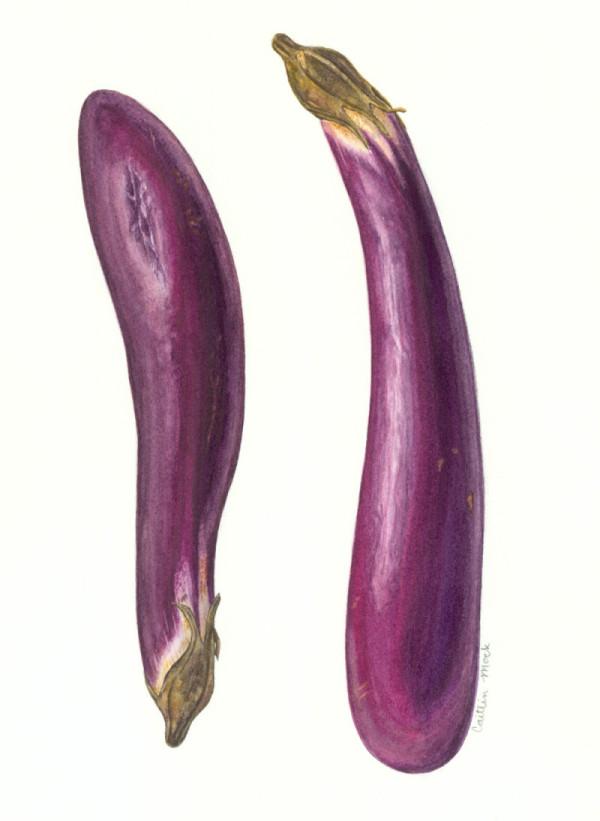 C Mock eggplant