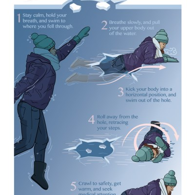 How To Survive Falling Through The Ice / Illustrator