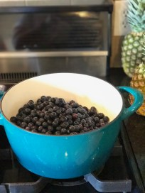 Measured blueberries in dutch oven