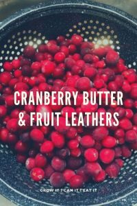 Cranberry Butter & Cranberry Fruit Leathers
