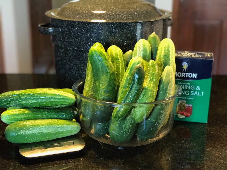Day 1 - Dill pickles