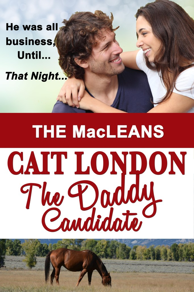 Book Cover: The Daddy Candidate