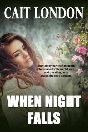 Book Cover: When Night Falls