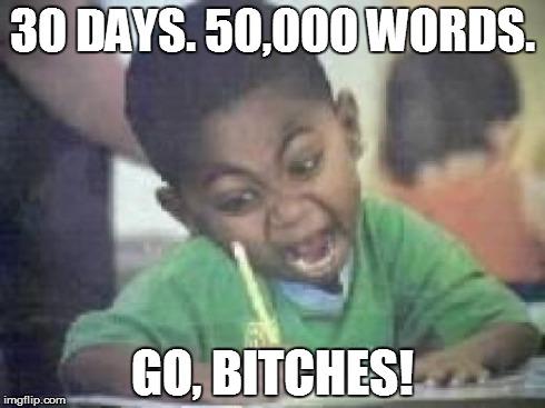 NaNoWriMo word count