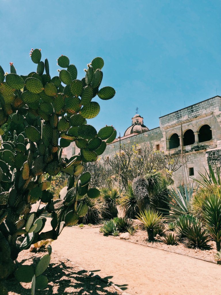 Ethnobotanical Garden of Oaxaca