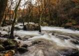 Río Pambre