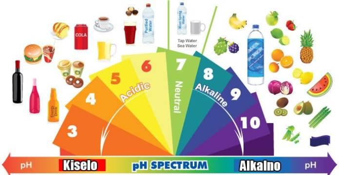 Image result for alkalna hrana