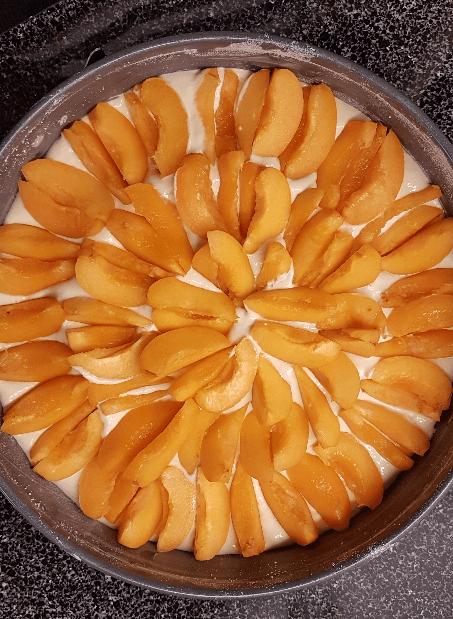 Aprikosen kreisförmig auf dem Rührteig verteilt