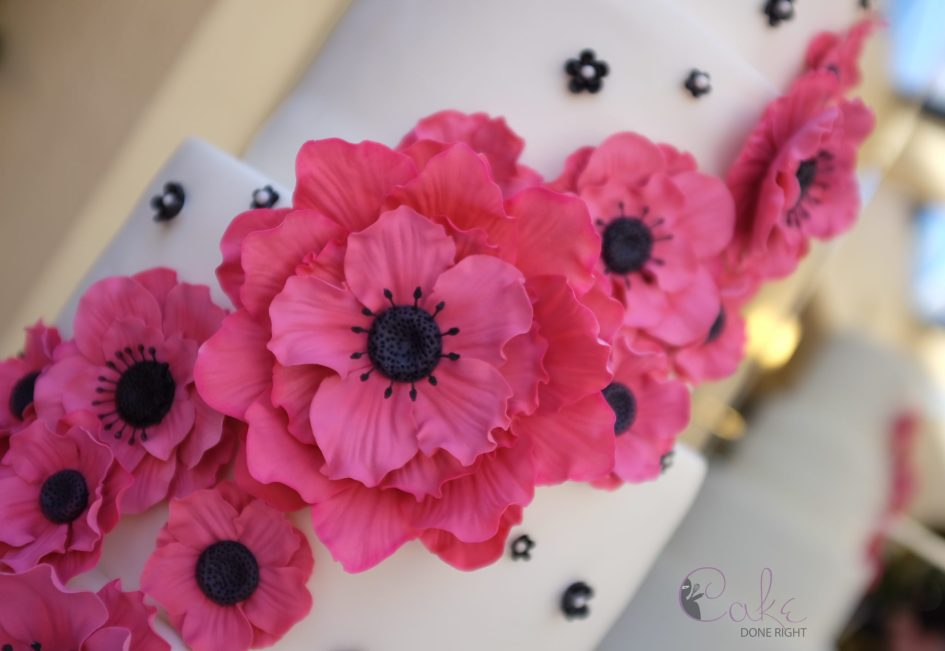 Cake Done Right Black Pink Anemone Flower Cascade - Close up WM