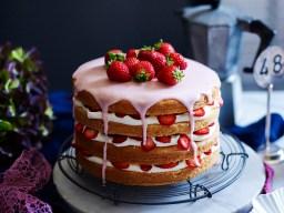 Big Birthday Cakes