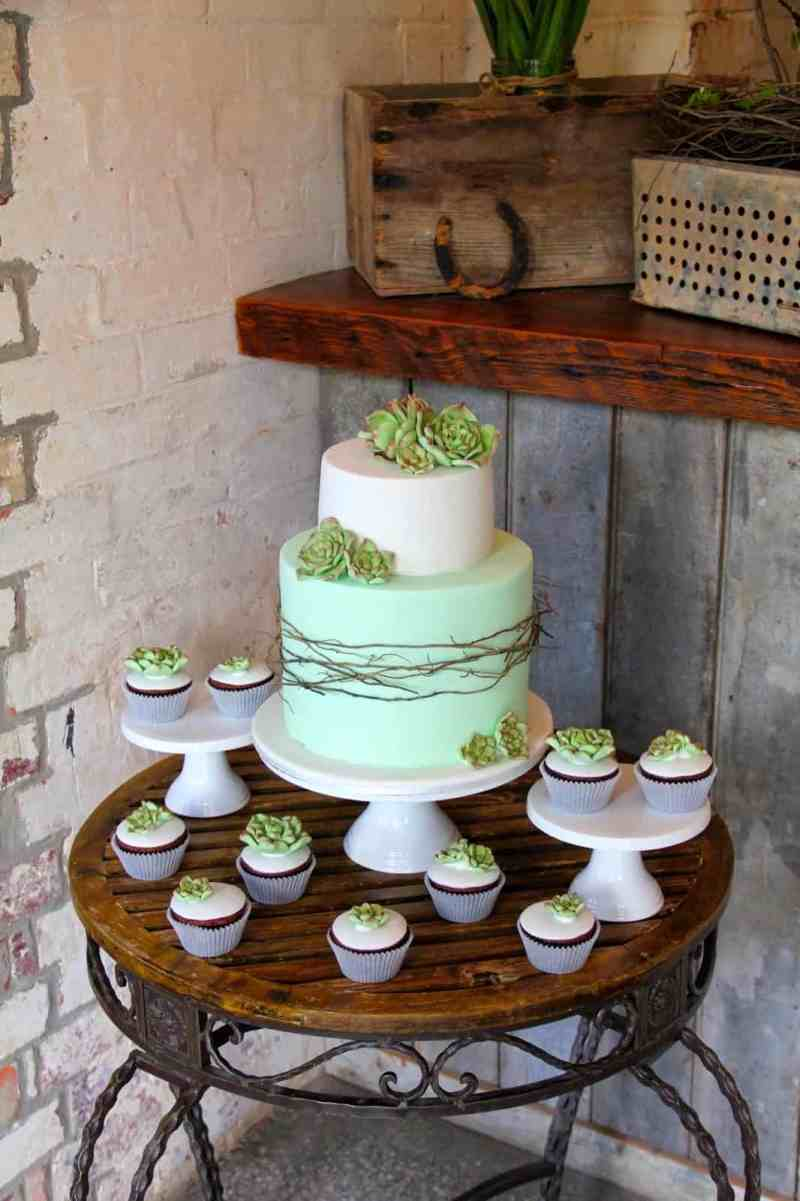 Rustic Wedding Cake with Succulent Topping